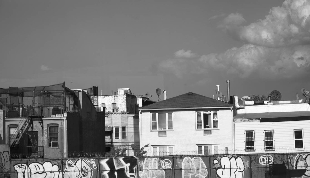 Bronx Landscape